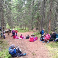 Skolbarn fikandes i skogen bland tallar och granar